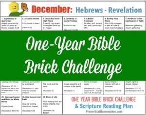 Teach your kids the Bible while they build with Legos! The November calendar for the One-Year Bible Brick Challenge goes from Hebrews to Revelation. Enjoy!