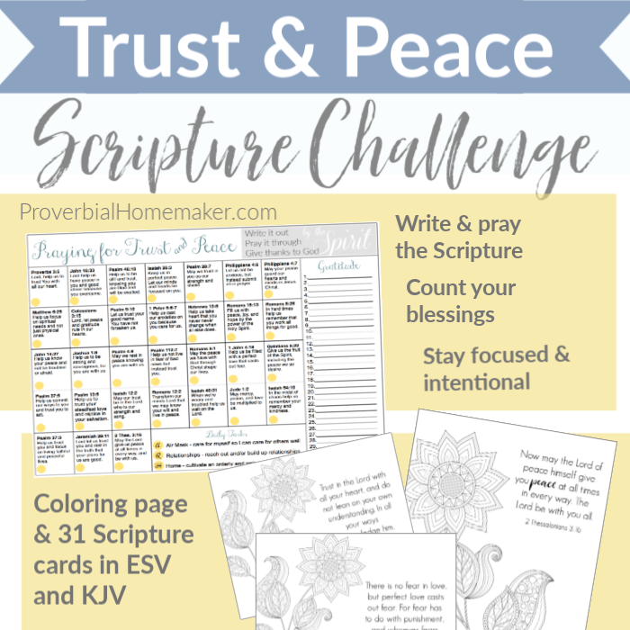Strengthen yourself in the Lord and focus on Scripture with this encouragement! Includes a downloadable Scripture challenge calendar and cards in ESV and KJV