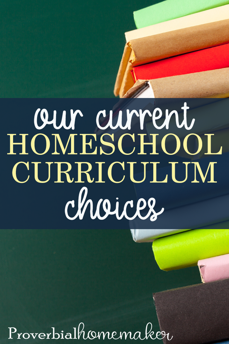 Check out what we're using for homeschool curriculum in 2019-20! I'll be homeschooling a Kindergartener, 1st grader, 2nd grader, 4th grader, and 6th grader. If you're a large family homeschooling mom doing multi-level homeschooling, or you just want some great ideas for pre-K through 6th, you'll love this list!