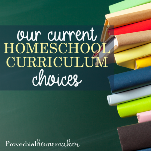 Check out what we're using for homeschool curriculum in 2019-20! I'll be homeschooling a Kindergartener, 1st grader, 2nd grader, 4th grader, and 6th grader. If you're a large family homeschooling mom doing multi-level homeschooling, or you just want some great ideas for pre-K through 6th, you'll love this list of curriculum choices!
