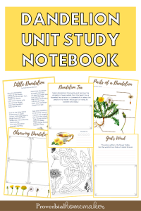 Dandelion unit study with printable notebook