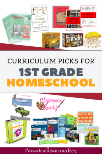 Looking for some great 1st grade homeschool curriculum choices? Here are top picks from a homeschool mom of 6!