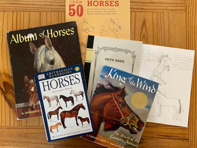 History of Horses 6th grade homeschool curriculum