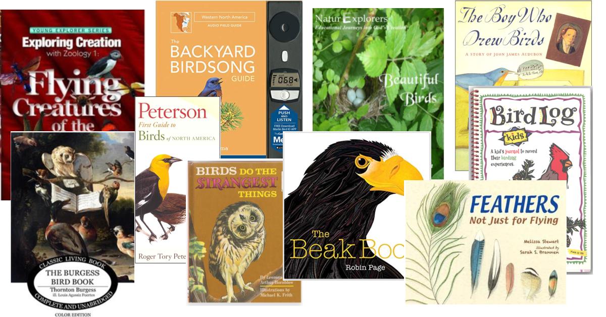 4th grade homeschool curriculum bird unit