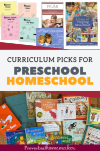 Looking for some great preschool homeschool curriculum choices? Here are top picks from a homeschool mom of 6!