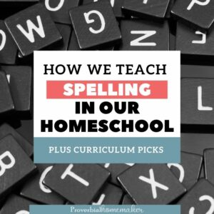 Tips on how to teach spelling along with top homeschool spelling curriculum picks from a mom of 6!